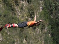 Doing bungee jumping
