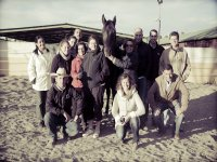 Coaching group with horses