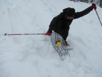 Another way of skiing