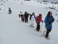 An expanding winter sport