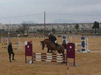 salto a caballo