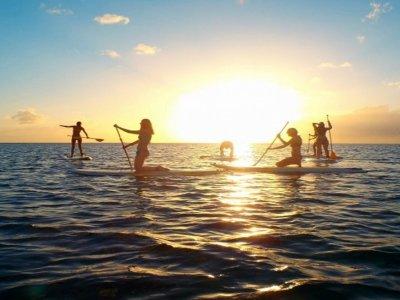 Nautic Ocean Paddle Surf