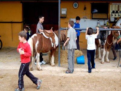 Club Hípico Santa Cruz Campamentos Hípicos