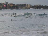 Varios surfistas cogiendo olas