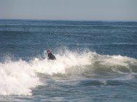 surfeando de inicio