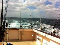 pesca al estilo currican