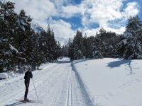 滑雪在画面暂停费用