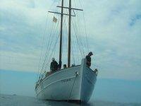 Pescando a bordo