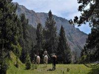 Rutas con caballo de carga en Lleida