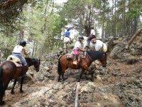 Atravesando el bosque a caballo en Lleida