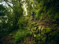 Ruta Flow Trails La Palma