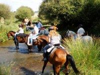 过河路线路线Cabañeros