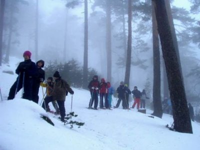 Andara Rutas Raquetas de Nieve