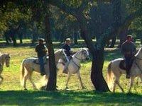 Rutas y pupilaje de caballos