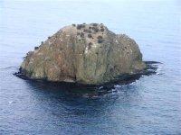 Pasear en barco en Murcia