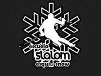Escuela de Esquí Slalom Snowboard