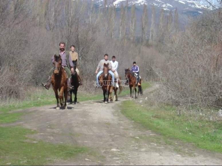 Caballos por la senda de la Sierra de Madrid