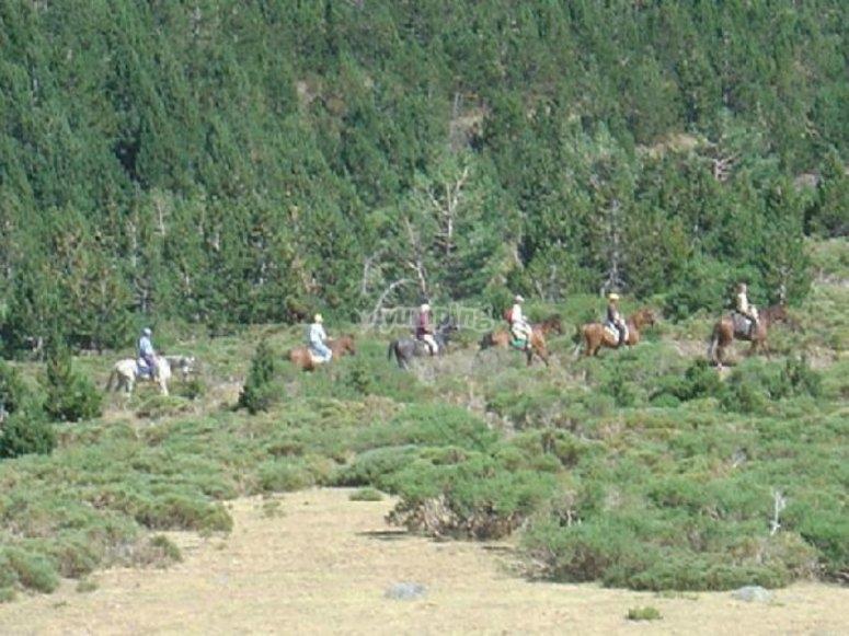 Rutas a caballo por la Sierra de Madrid