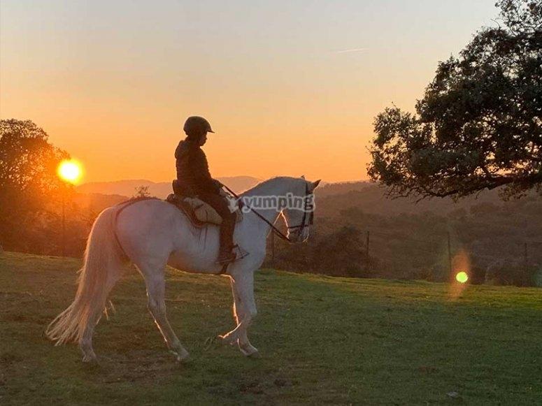 Preparándonos para una ruta a caballo nocturna