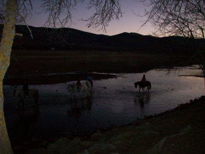 在Lozoya谷的马背上的Lunadas,夏天