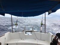 Parte trasera del barco navegando