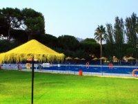 夏季游泳池