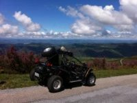 Discover the environment about buggies