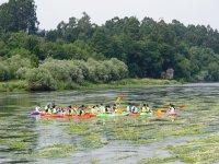 Grupo de kayaks en el Mino
