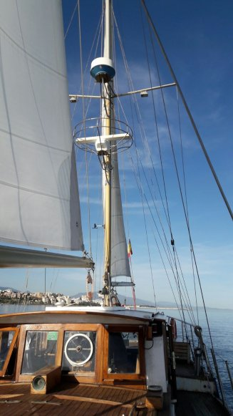 res_o-36342-paseos-en-barco_de_celia_14949580104627.jpg
