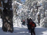 Excursión de raquetas de nieve en Madrid