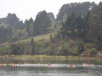 Travesia en canoa por la ribera