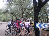 grupos bici