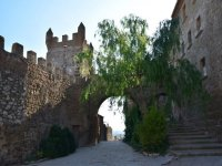 Discovering Catalonia