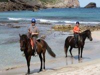 在马略卡岛的马背上