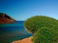 Haz fotografía en Menorca