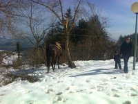 Rutas en invierno