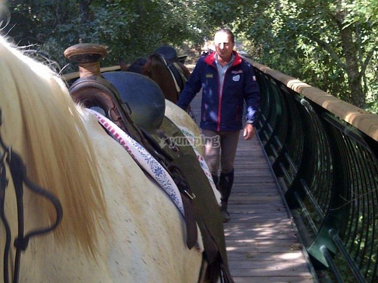 Passeggiata a cavallo sul ponte