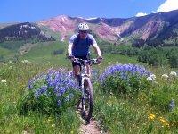 壮观景色山地自行车MTB路线
