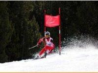 高山滑雪比赛