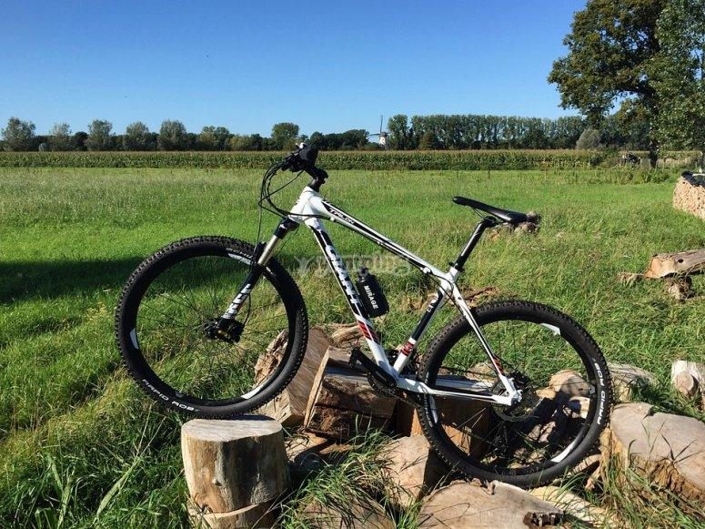 Bicicleta de montana entre las rocas
