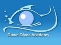 Dawn Dives Academy