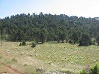 Orientación en Castilla-La Mancha