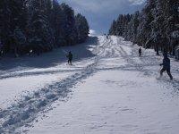越野滑雪和雪鞋越野滑雪课程