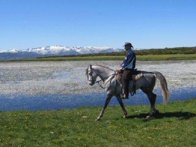 Ruta a caballo por Gredos media jornada