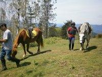 奇科已降低三位年轻的骑手
