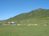 远足巴凯艾勒山风景