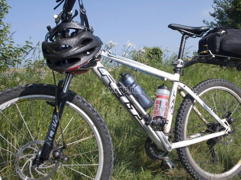 自行车在野外