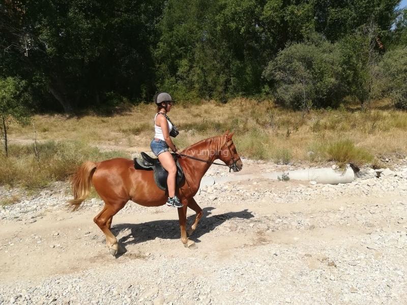 res_o-38099-rutas-a-caballo_de_patricia-truchado_15034898016652.jpg