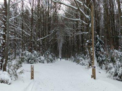 Larra-Belagua Esquí de Fondo