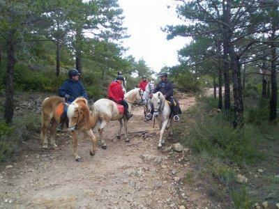 Horse riding trip in Rodonyà 1 hour